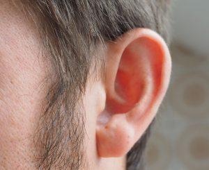 ear-1355652_1280